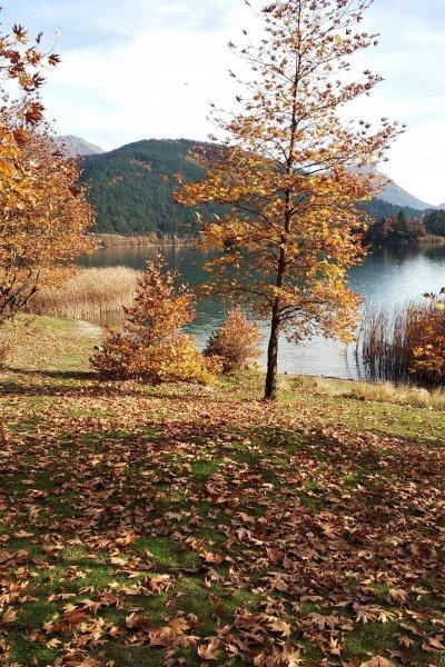 lakes-home-banner
